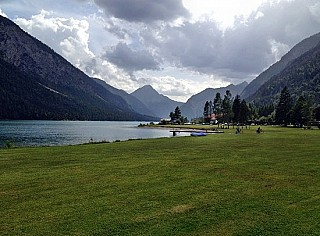 Musteralpe am Plansee