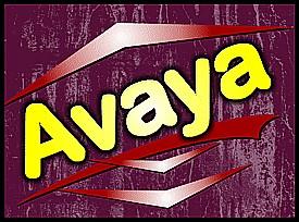 Pizza Avaya