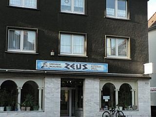 Zeus-Grill