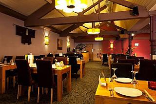 Yo Yo Bar and Restaurant